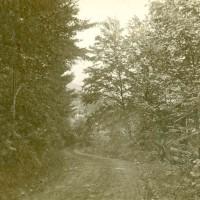 Woodlands, 1898-99